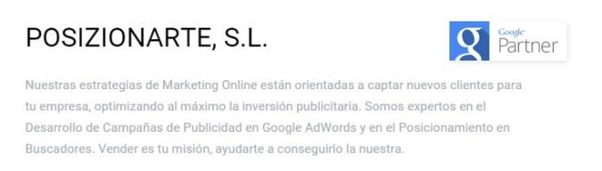 pzt google partners